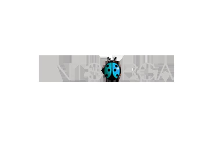 Compagny Logo from Entsorga Italia
